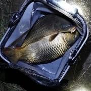 一些简单的钓鱼技巧及心得。