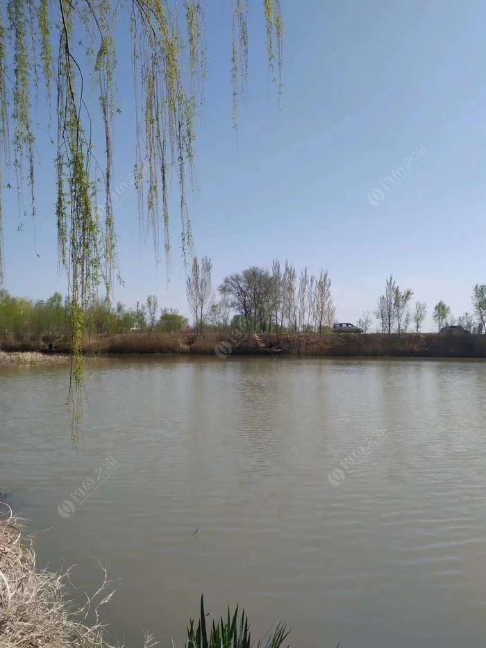 商中河彭家桥段