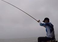 《白条游钓》天下第一塘,连杆大鳊鱼