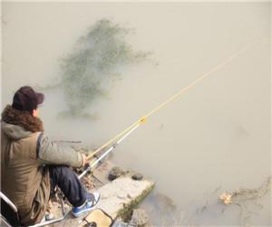 不同水域下该如何进行找底和调钓!