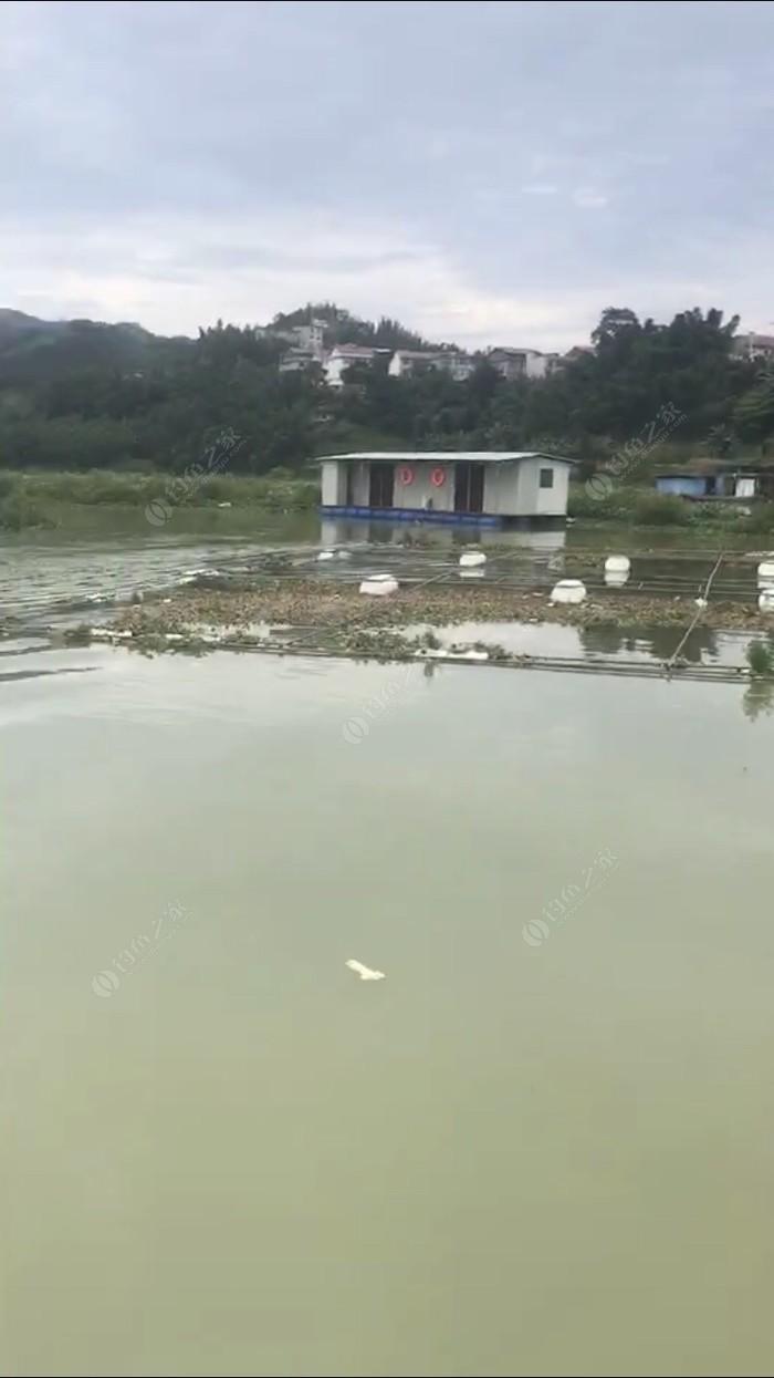 南平太平筏钓场