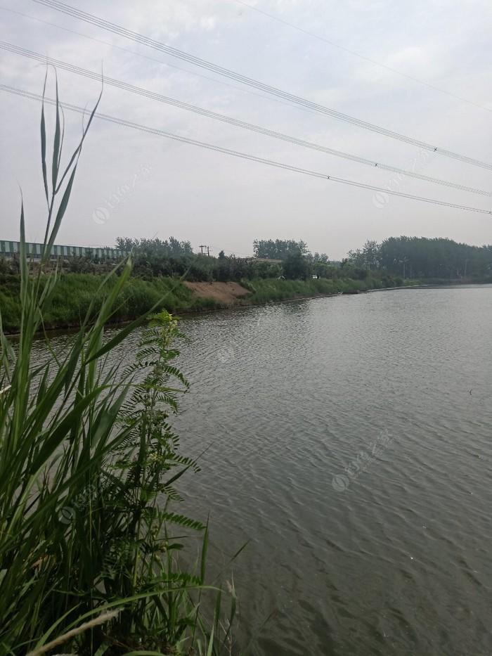 桃岚化工园