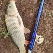 干貨分享:川渝谷麥釣如何選擇釣位