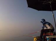 《白条游钓》这种奇葩打窝要领,鱼来了吃不着还舍不得走,大鳊鱼连竿得手软