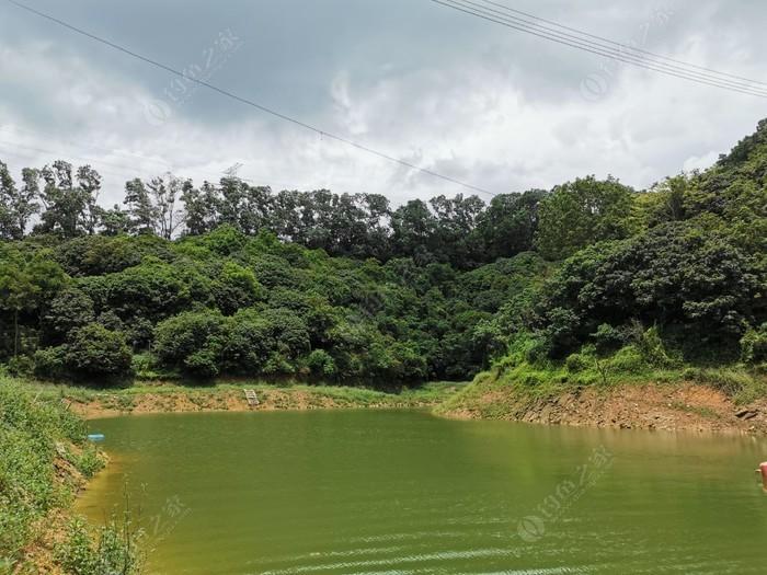 梧桐山天鹅湖水库