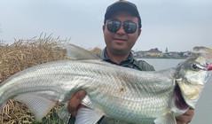 《潯魚問道》里下河網紅標點探釣,無所畏淺水搜索模式!