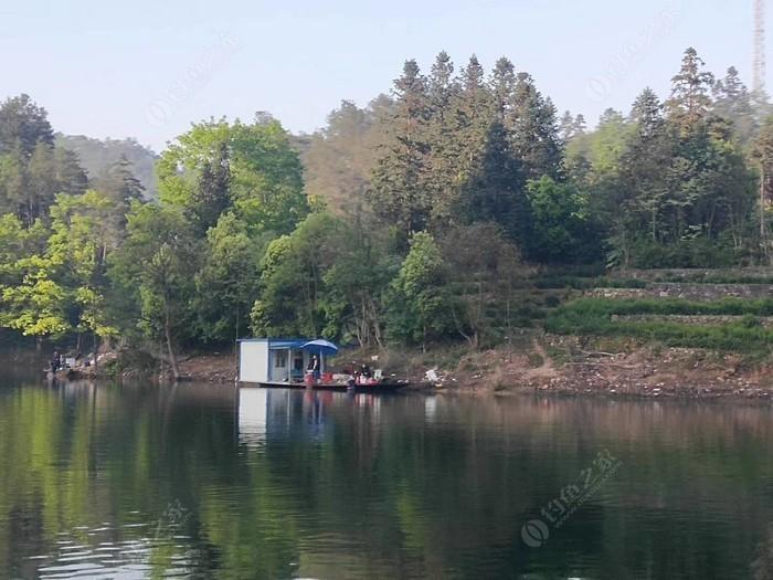 黄山太平湖生态钓场