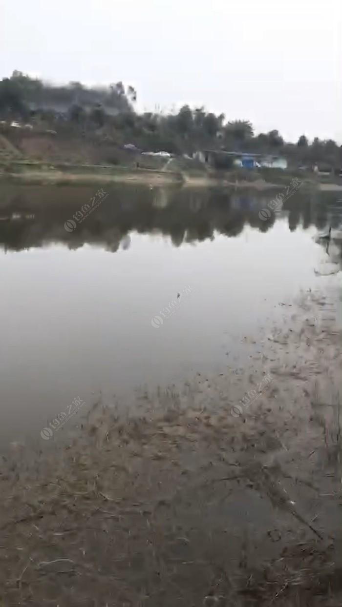 烈士堰水库