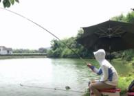 《戶外老曹》實戰!浮釣鰱鳙 溜魚的感覺太爽了!