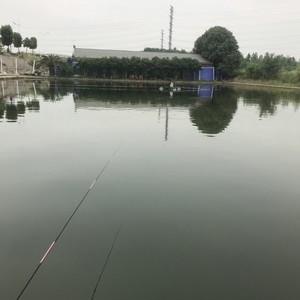 嗨鱼庄钓场