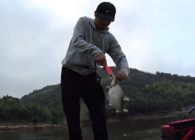 《麦子大通国际官网》大通国际官网实战 混养水域这样作钓 想爆护并不难!