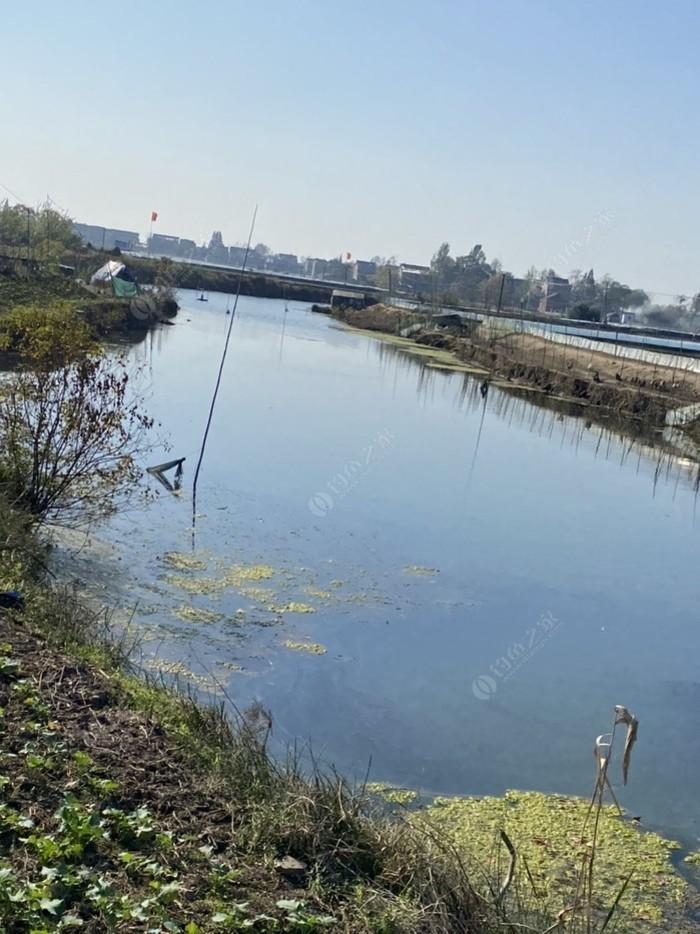 塘南邰桥有条沟