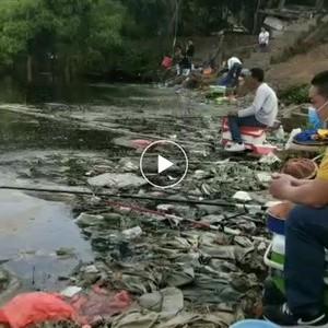 石都钓鱼场