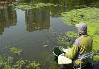 遇到陌生水域該這樣做釣!