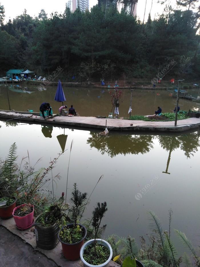 三明小鱼塘