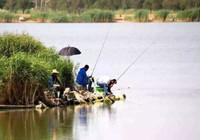 春季作釣容易出現的一些問題!