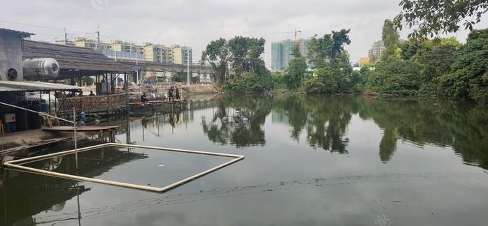 辛昌钓鱼场