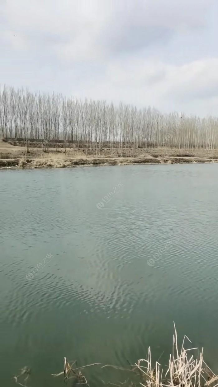白沟河佟村段