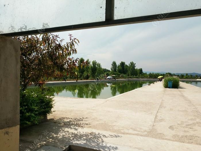 杜阳鱼乐园