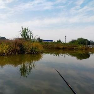 秦晋家庭农场
