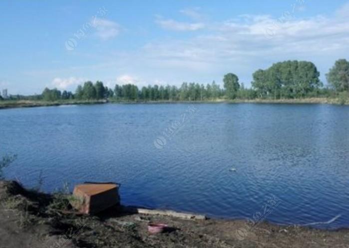 原生态钓鱼场