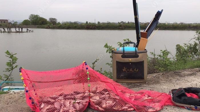 芜湖泊口河野生鱼垂钓