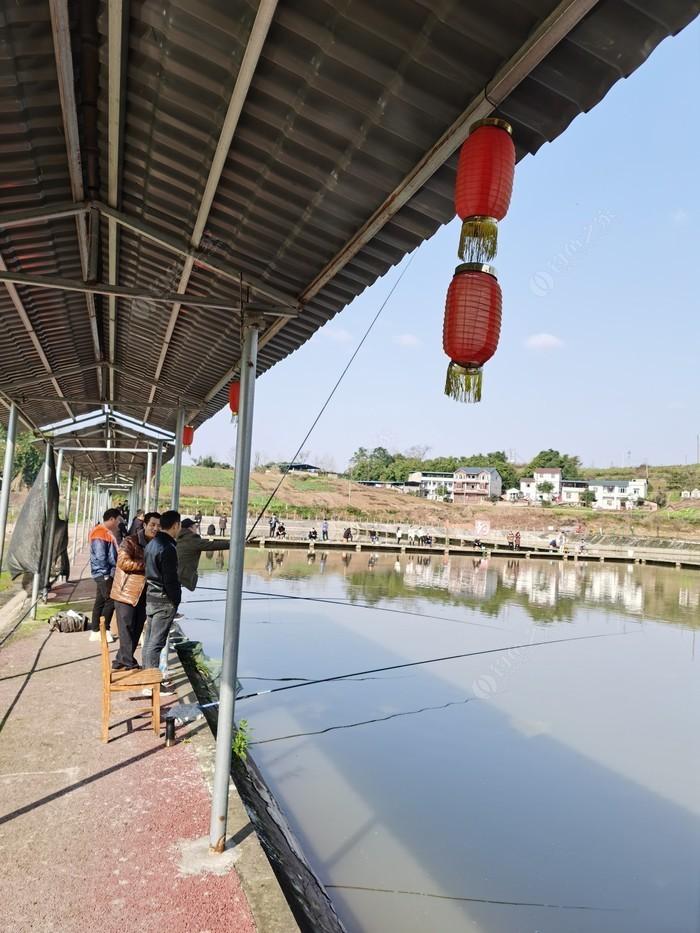 九龙湖渔场
