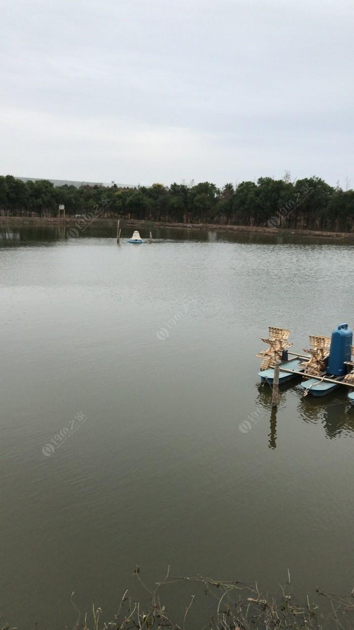杨顺钓鱼场