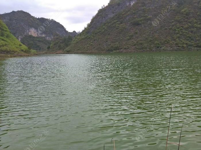 朗月湖纯天然钓场