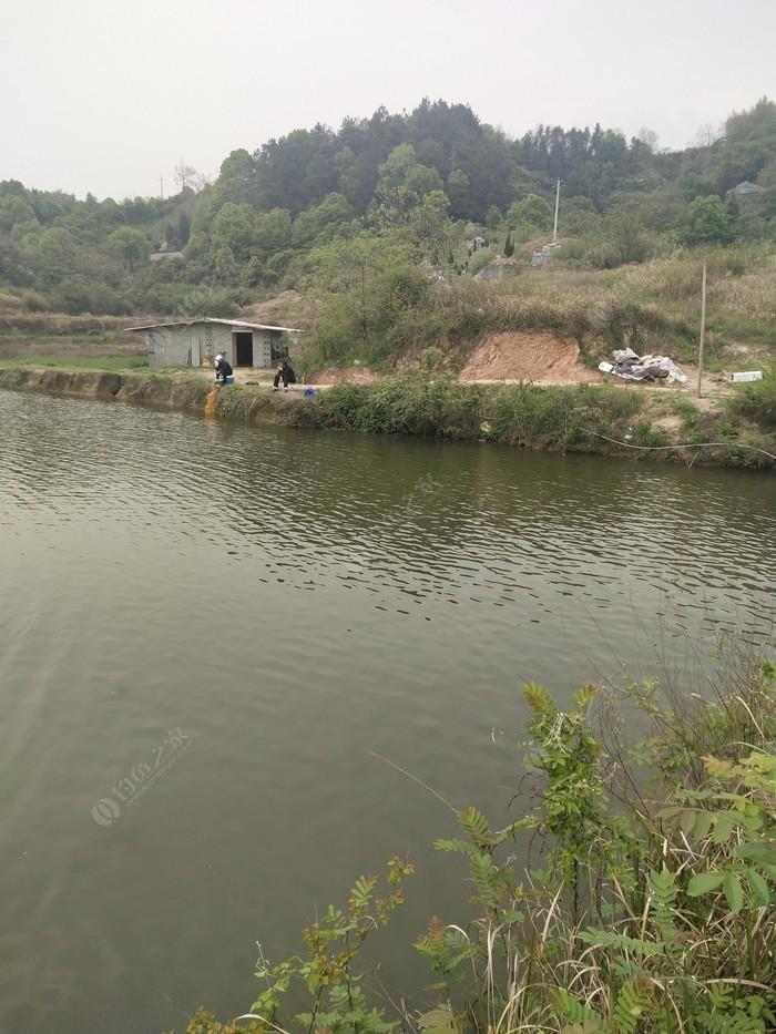 铁柱港钓鱼场