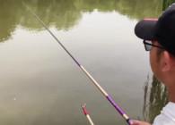 《户外老曹》钓鱼抛饵看似基础 遇到这几种情况也不容易!