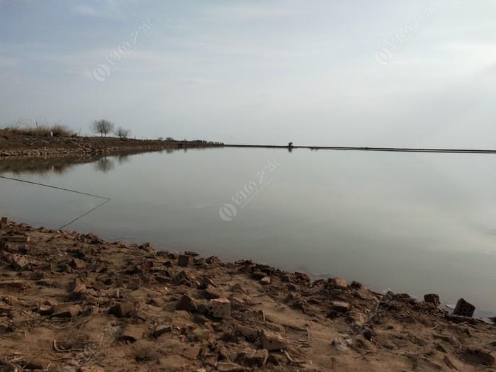 黃河回水灣