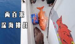 《全球釣魚集錦》200米深海慢搖鐵板,作釣紅寶石和黑石斑!