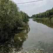 [技巧篇亅秋季釣鯽魚與天氣的關系淺析。