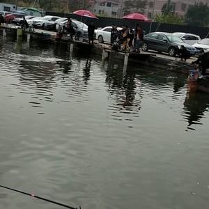 欢艺钓鱼场