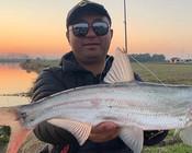 《浔鱼问道》冬季里下河路亚,大水面鱼较分散,如何找鱼?