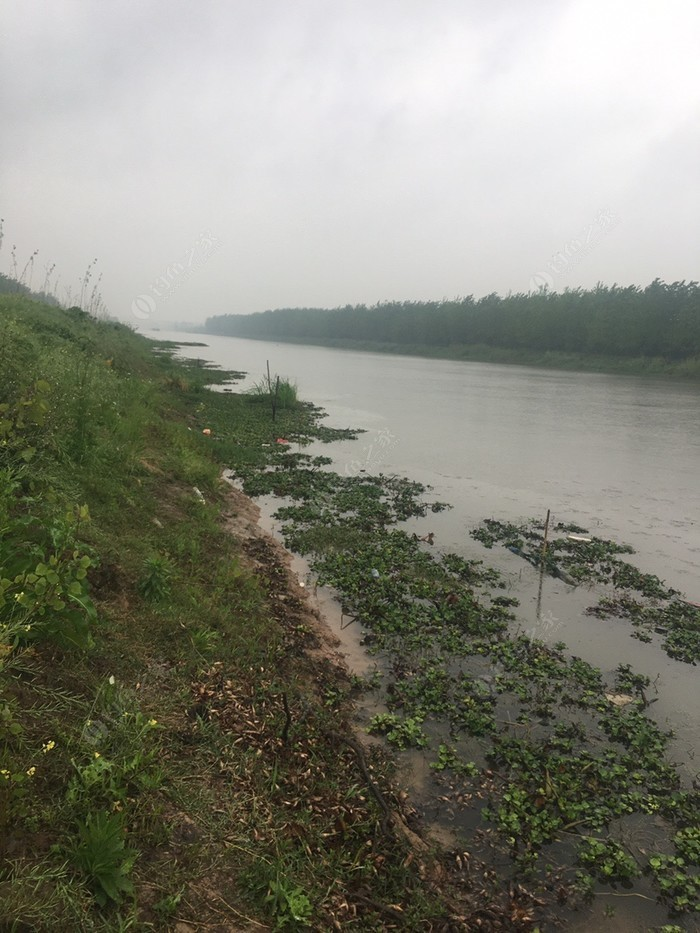 白螺镇渠道河