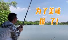 《户外老曹》要钓到2斤以上的鳊鱼才能吃到美味,吃货这下拼了!