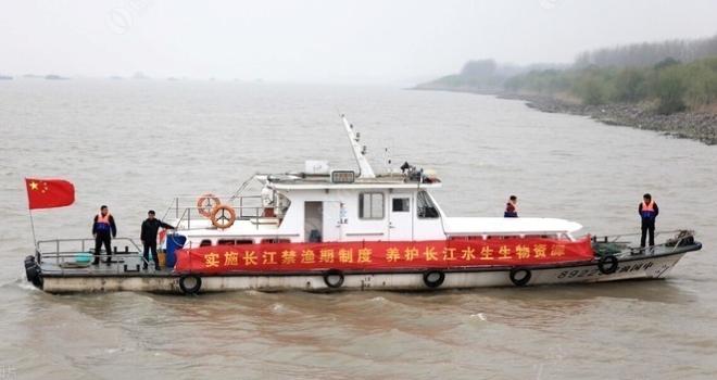 究竟为何要禁渔,长江禁渔的真相,到底是什么?