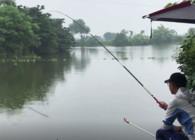 《户外老曹》注意这几点 梅雨季节也能钓好鱼!