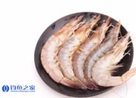 《钓鱼百科》第193集 怎么开虾饵?