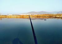 初夏作釣,必備的幾點因素!