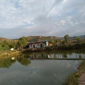 良邑乡休闲垂钓中心