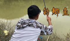 《戶外老曹》釣鯽魚還是要早晨,老曹用上了專用的鯽魚竿!