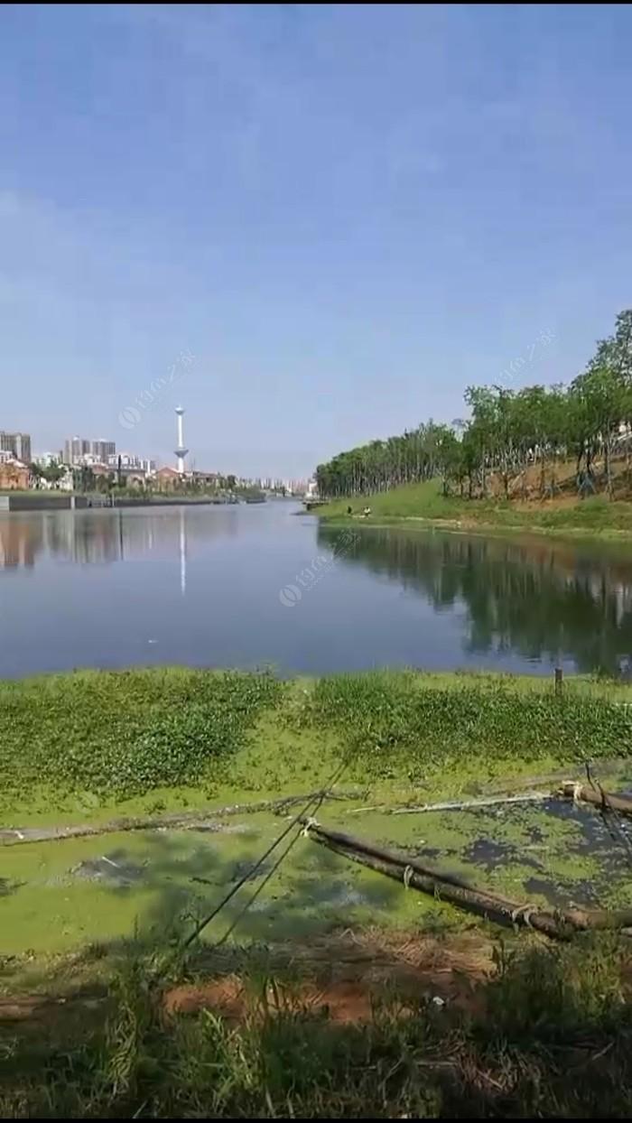 澧县河湖连通西段