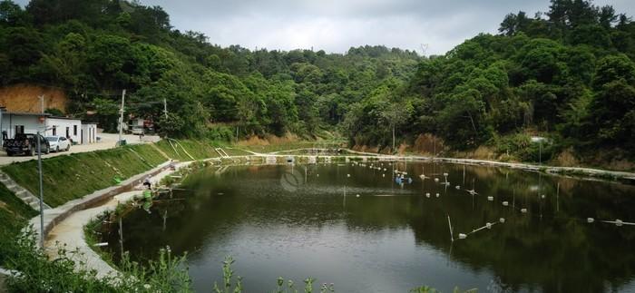 木子广龙钓鱼场