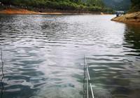夏季釣灣,必備的技巧分享!