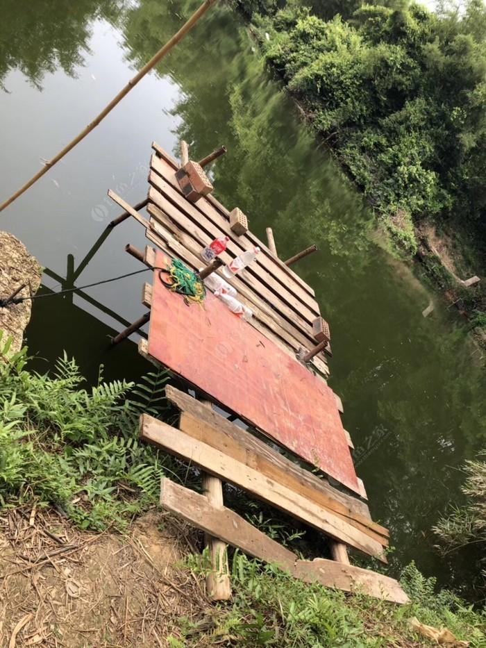 沙塘金龟桥河段钓场