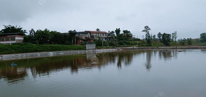 江园钓鱼场