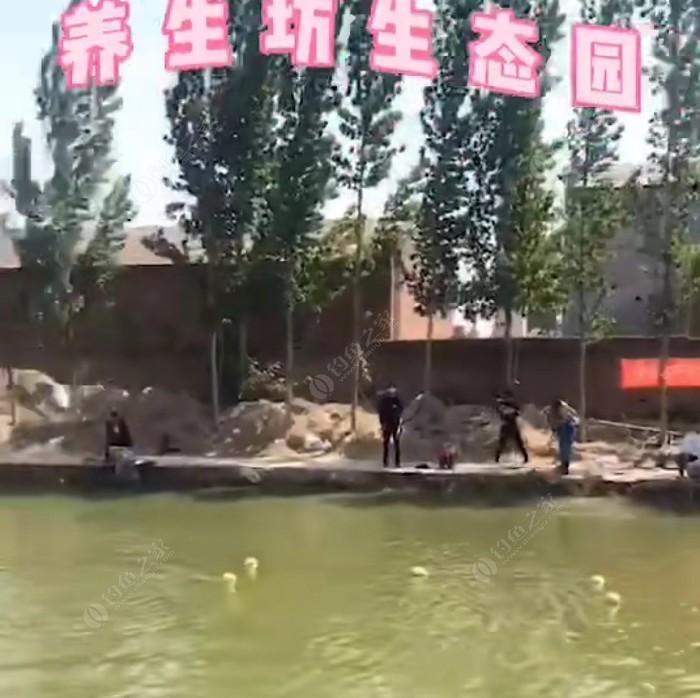 卫辉李亨屯养生坊生态园